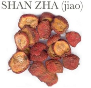 Chinese Medicine for High Blood Pressure - Chinese Hawthorn (shan zha)