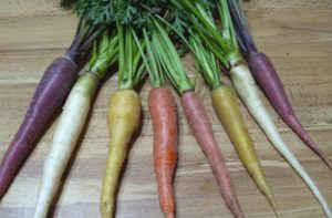 carrot leaves nutrition